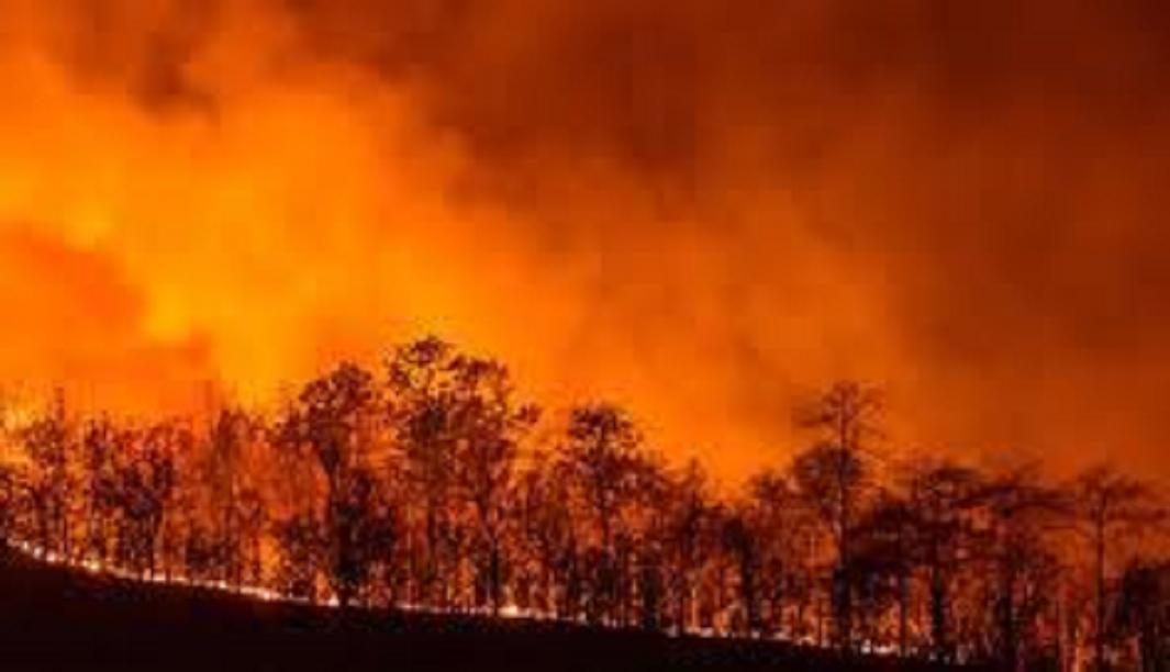 Tomar en cuenta el caso de Australia para replantear la política climática en México.