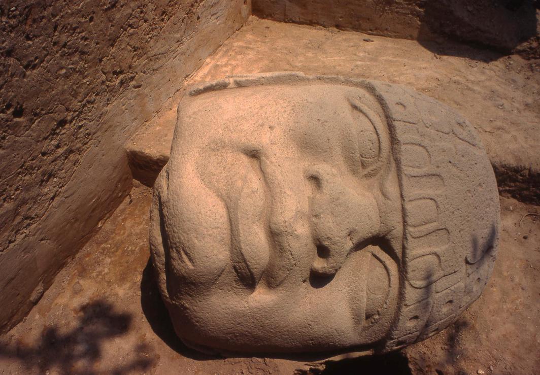 Los olmecas entre poblaciones fundadoras e indígenas de América.