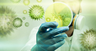 PROPONEN PROBAR MEDICAMENTO DE LA HEPATITIS C COMO TRATAMIENTO PARA COVID-19