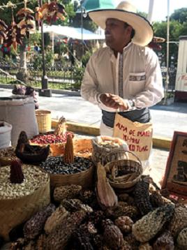 AMENAZAS AL CAMPO MEXICANO